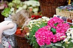 Fleurs sentantes adorables de petite fille Photographie stock libre de droits