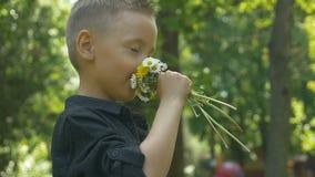 Fleurs sentantes d'été d'enfant en bas âge et nez se sentant chatouillant dans un secteur en bois récréationnel banque de vidéos
