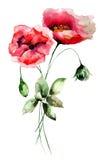 Fleurs stylisées de pavot Photographie stock libre de droits