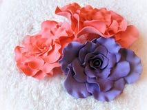 Fleurs sucrées de rose et violettes Photo stock