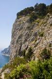 Fleurs sur des falaises de Capri Photographie stock