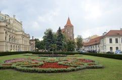Fleurs sur l'herbe à la place de Cracovie images libres de droits
