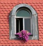 Fleurs sur l'hublot Photographie stock libre de droits