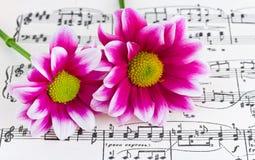 Fleurs sur la musique de feuille Photos libres de droits