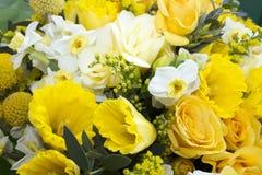 Fleurs sur la photo de fenêtre Images libres de droits