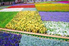 Fleurs sur la place rouge Photographie stock libre de droits