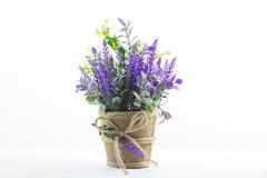 Fleurs sur le fond de blanc de table images stock
