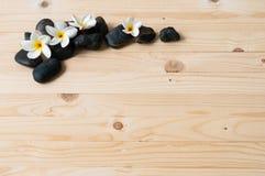 Fleurs sur le groupe de la pierre noire Photographie stock
