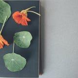 fleurs sur le livre Photos stock