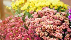 Fleurs sur le march? photo stock