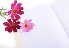 Fleurs sur un écriture-livre images libres de droits