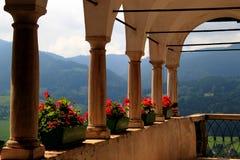 Fleurs sur un balcon de château Hochosterwitz, Kaernten, Autriche Photos stock