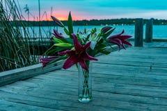 Fleurs sur un dock Photographie stock