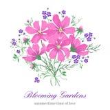 Fleurs sur un fond blanc illustration stock