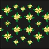 Fleurs sur un fond noir Photographie stock
