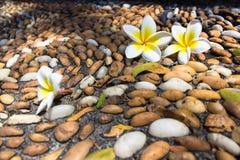 Fleurs sur une mosaïque en pierre Image stock