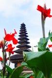 Fleurs, temple d'Ulun Danu, Bali photographie stock libre de droits