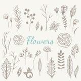 Fleurs tirées par la main de vintage réglées Images stock