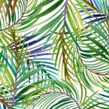 Fleurs tropicales, feuilles watercolor Images libres de droits