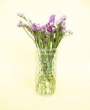 Fleurs violettes en verre Image libre de droits