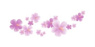 Fleurs violettes mauve-clair volantes d'isolement sur le fond blanc fleurs d'Apple-arbre Cherry Blossom Cmyk du vecteur ENV 10 Photographie stock