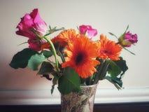 Fleurs vives de couleur images stock