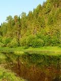 Fleuve 4 de forêt photographie stock libre de droits