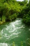 fleuve Photographie stock libre de droits