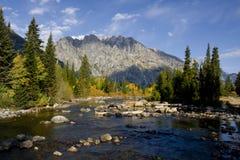 fleuve Photo stock