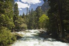 fleuve image libre de droits