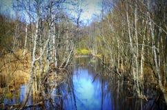 Fleuve au printemps Photo stock