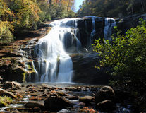 fleuve chauve d'automnes Image libre de droits