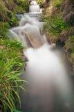 fleuve circulant Photos libres de droits