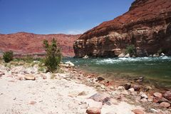 Fleuve Colorado En gorge de marbre, Arizona Photographie stock
