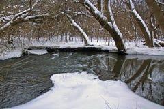 Fleuve d'écorce en hiver Photos libres de droits