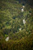 fleuve d'Alaska Photos libres de droits