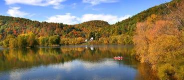 Fleuve d'Allegheny Images stock