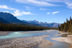 Fleuve d'Athabasca Images stock