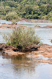 Fleuve d'Iguassu Images libres de droits