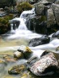 Fleuve dans haut Tatras Photographie stock libre de droits