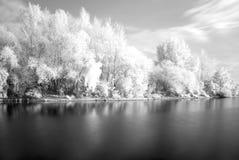 Fleuve dans infrarouge Photos libres de droits