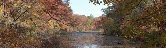 Fleuve dans l'automne Photos libres de droits