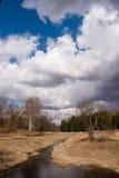 Fleuve dans l'herbe sèche Photos libres de droits