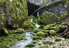 Fleuve dans la pierre verte Photo libre de droits