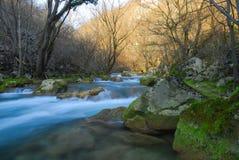 Fleuve dans les montagnes Images stock