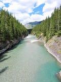 Fleuve dans les Rocheuses canadiennes Images libres de droits