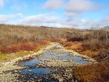 Fleuve de Birdtail dans l'automne Images libres de droits