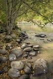 fleuve de capot Photos libres de droits