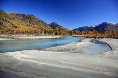 fleuve de forêt Photos libres de droits