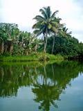 Fleuve de Hanalei, Kauai Photographie stock libre de droits